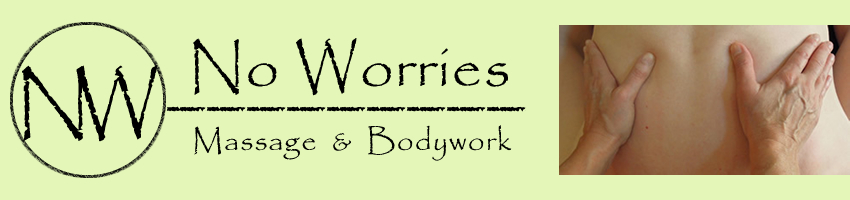 no worries logo